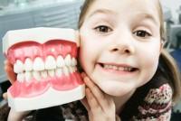 Хотите иметь хорошую память – берегите зубы